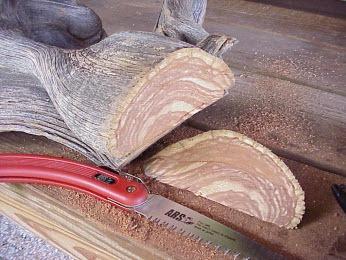 Cách tạo bonsai Tanuki cưa gỗ